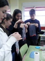 Extracting strawberry DNA